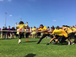 HSA Field Day 2017